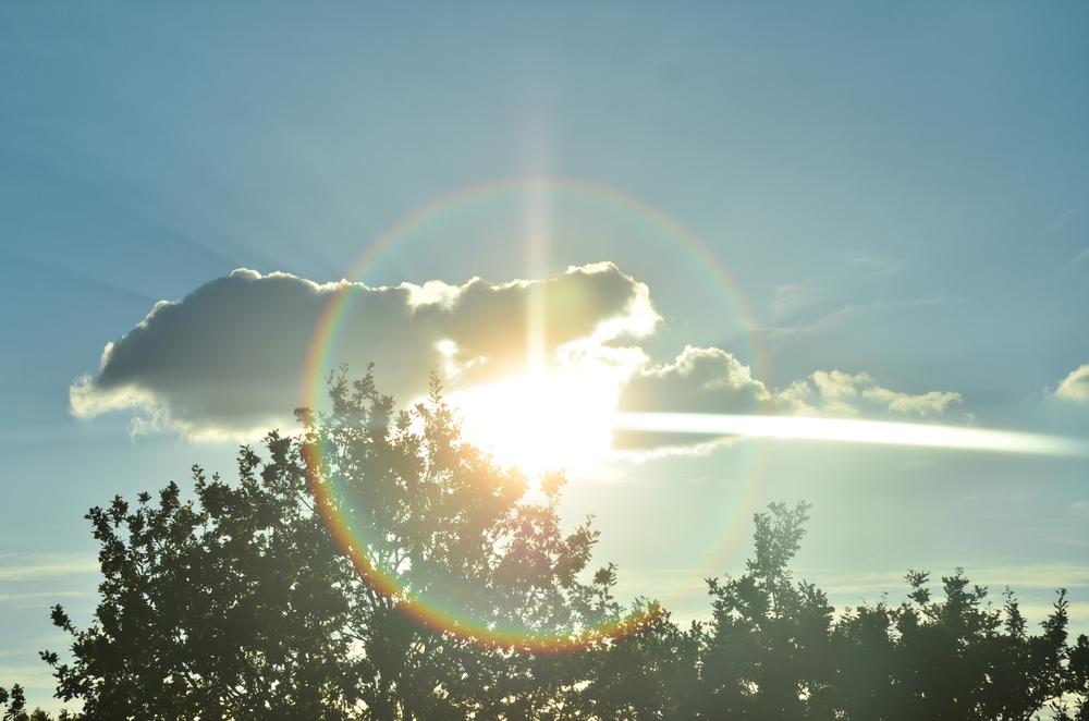 lense Glare