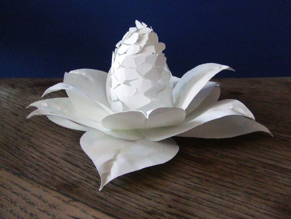 papercut-paper-flower-craft.jpg