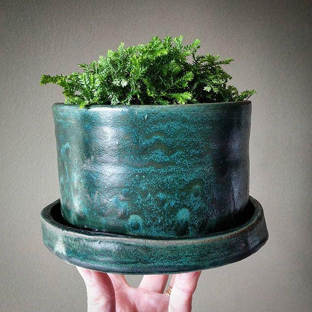 Little planter. . . . #pottery #ceramicart #ceramics #planter #moss #turquoise #lowfire #lowfireglaze