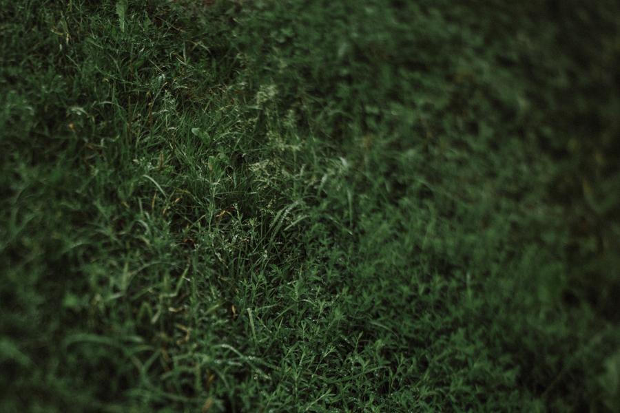 Ania-Mateusz-055.jpg