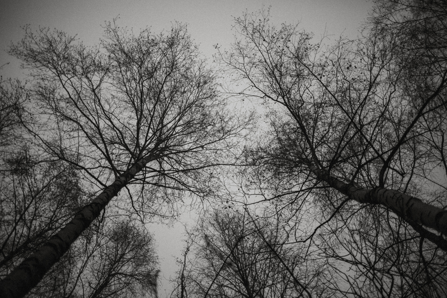 sesja-slubna-w-lesie-fotograf-slubny-poznan-038.jpg