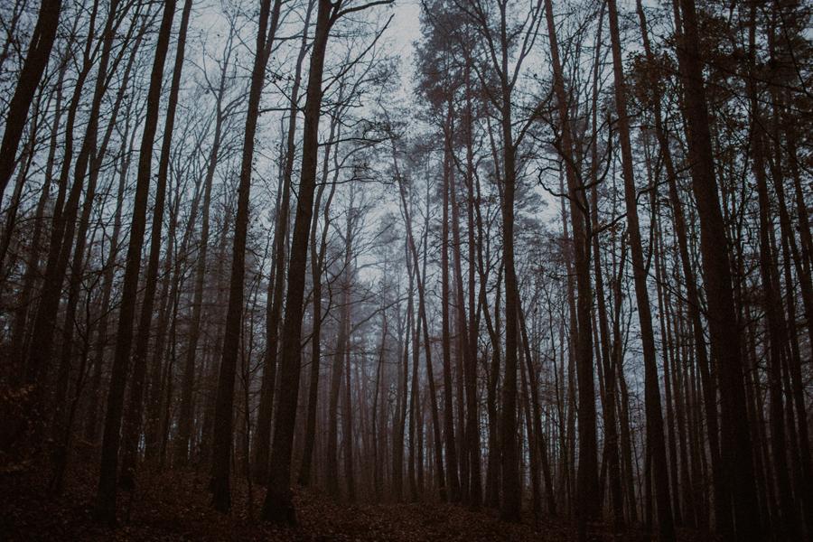 sesja-slubna-w-lesie-fotograf-slubny-poznan-040.jpg
