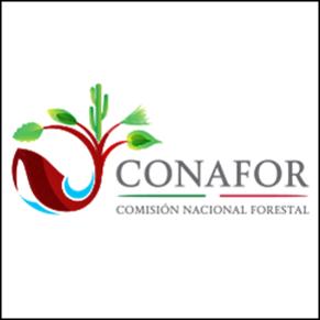Comisión Nacional Forestal