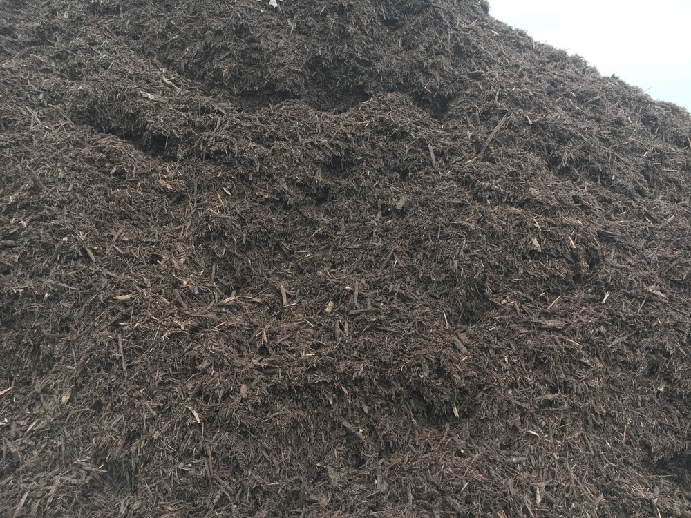 Dark brown mulch.JPG
