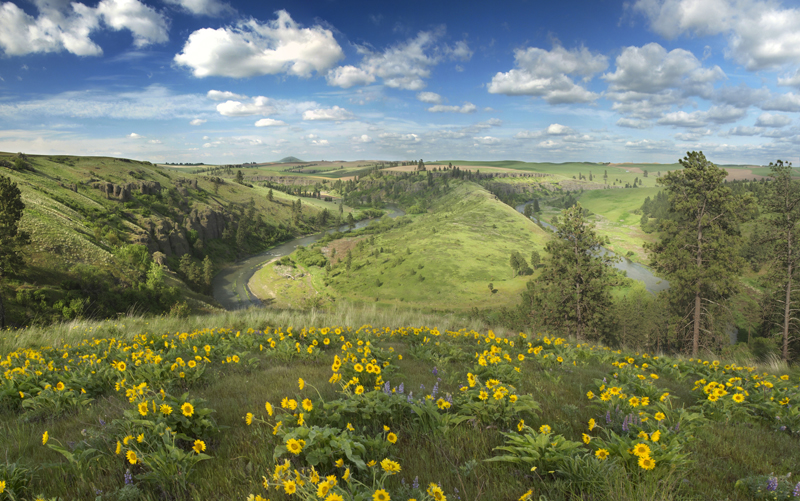 Palouse River Panorama