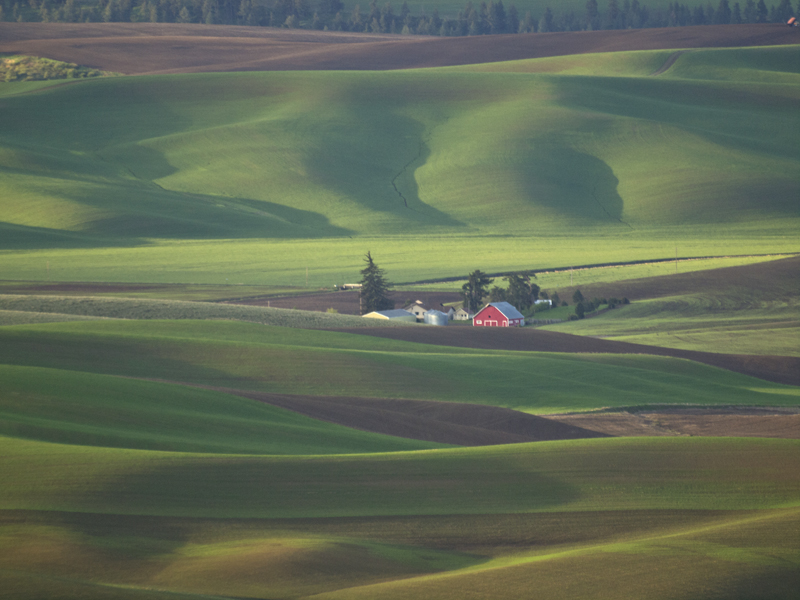 Red Barn on Palouse