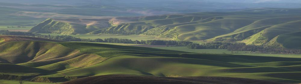 Touchet Valley Panorama