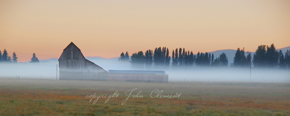 Montana Mist