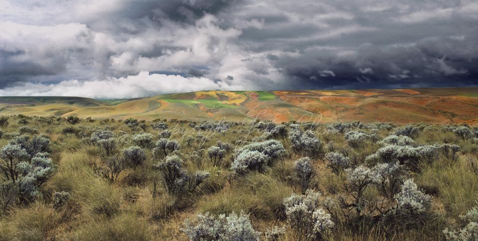 Stormy Skies Horse Heaven Hills