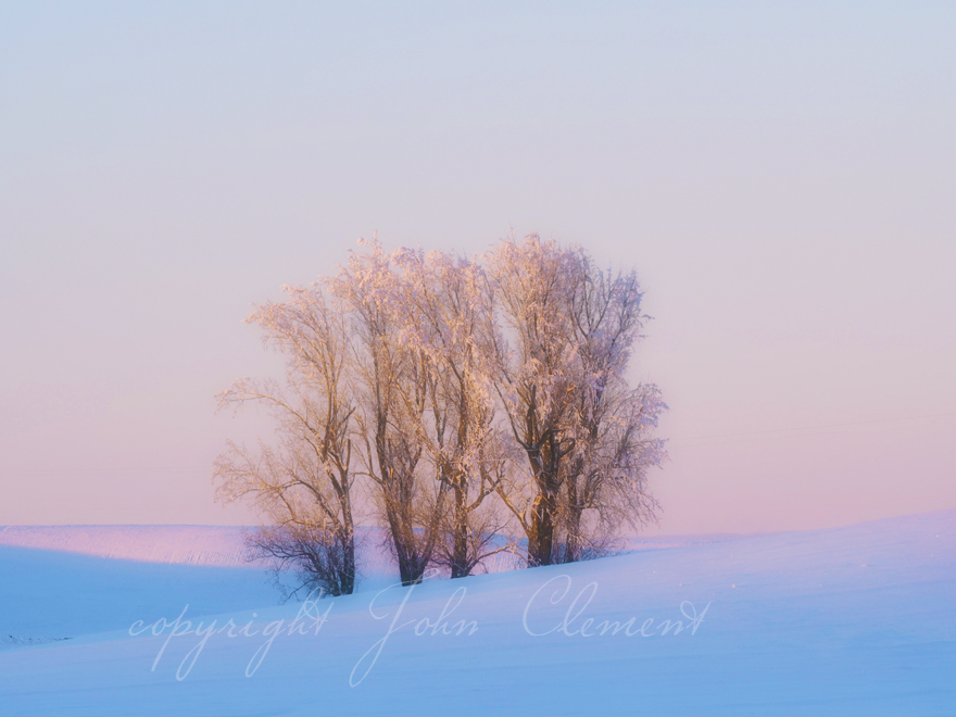 Winters Twilight