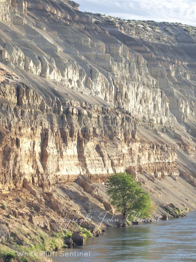 White Bluffs sentinel II.jpg