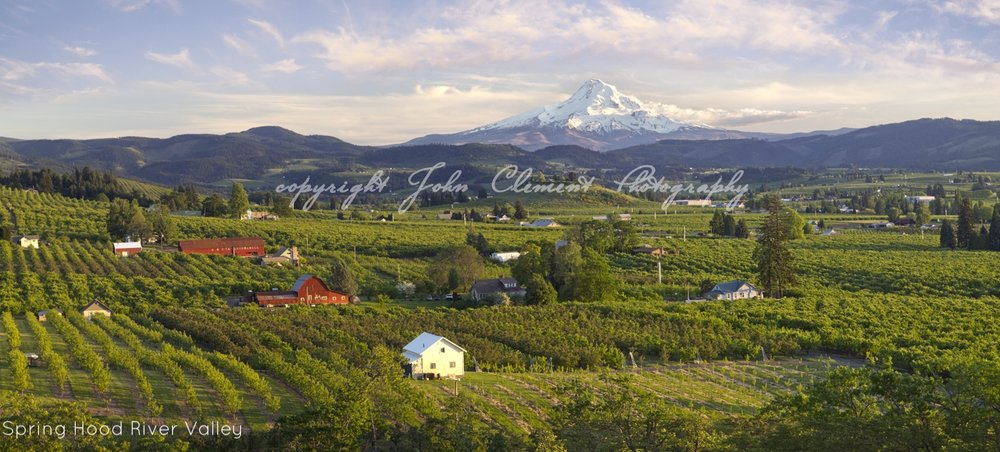mt hood sprin evening.jpg