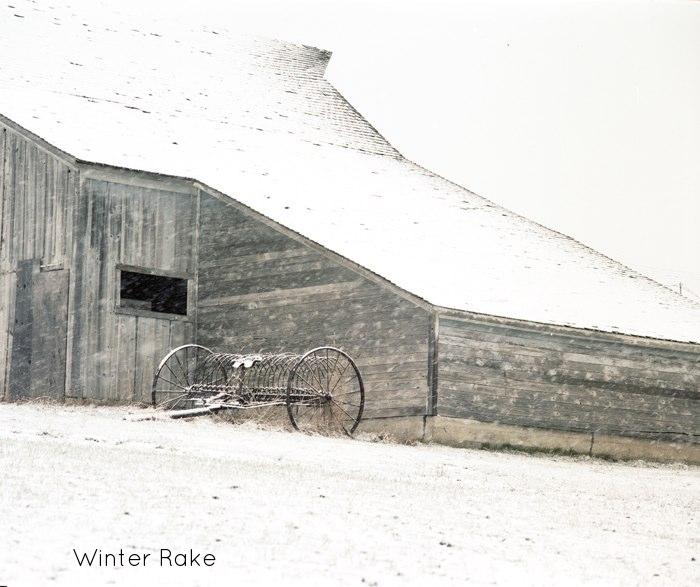 Winter Rake.jpg