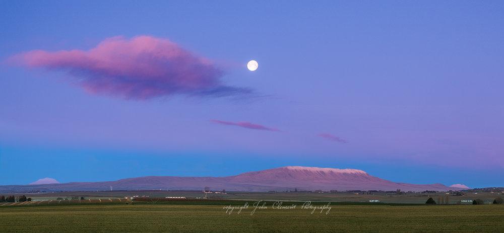 morning Moon rattlesnake_HDR-a.jpg