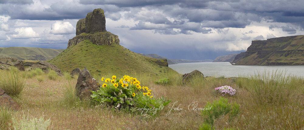 Wallula Spring Panorama