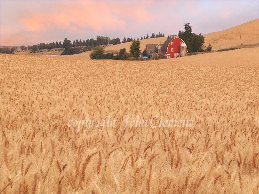 Old Farm 2