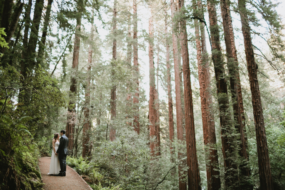Muir Woods Wedding-38.jpg
