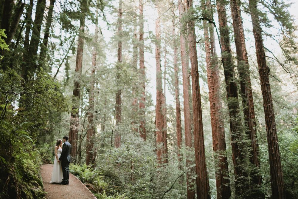 Muir Woods Wedding-38.jpg