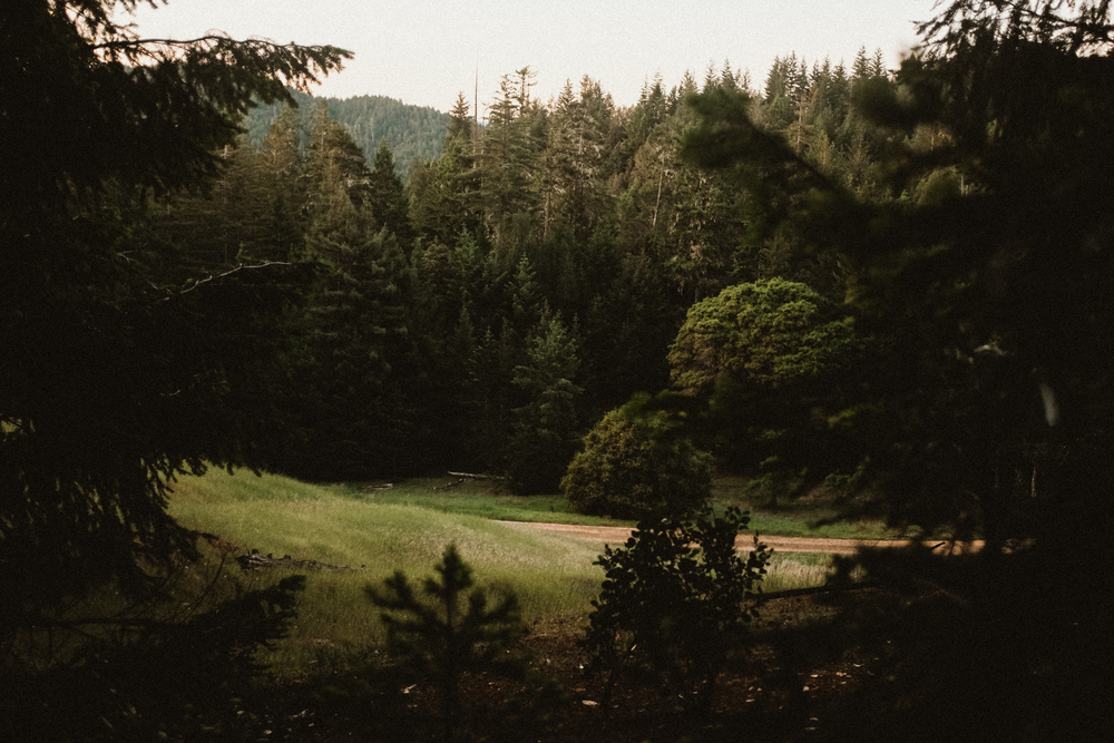 Fuji-x100t-California-52.jpg