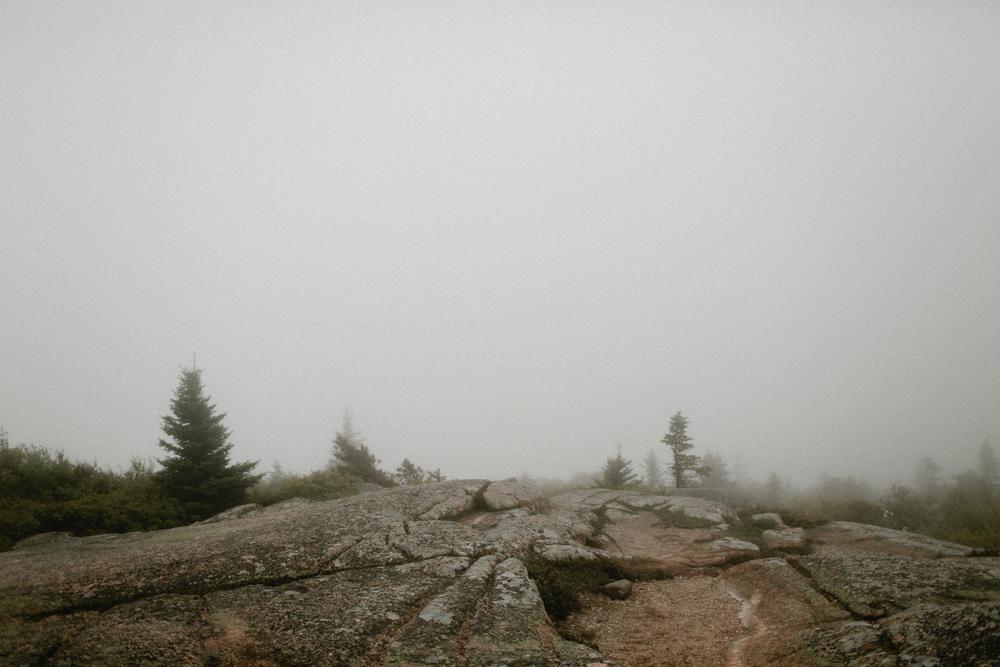 Acadia-National-Park-Elopement-13.jpg