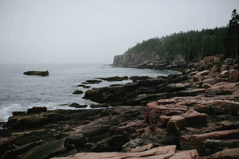 Acadia-National-Park-Engagement-68.jpg