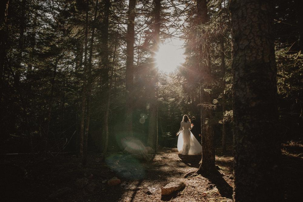 Acadia-Elopement-110.jpg