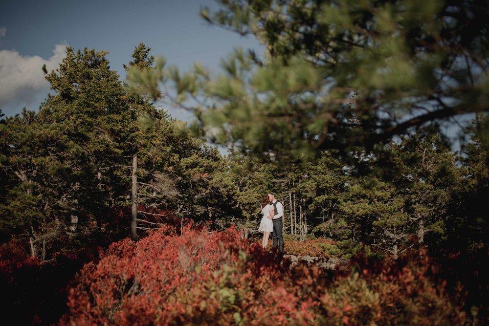 Acadia-National-Park-Elopement80.jpg