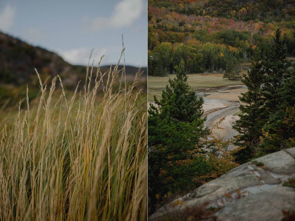 Acadia-National-Park-Elopement1o.jpg