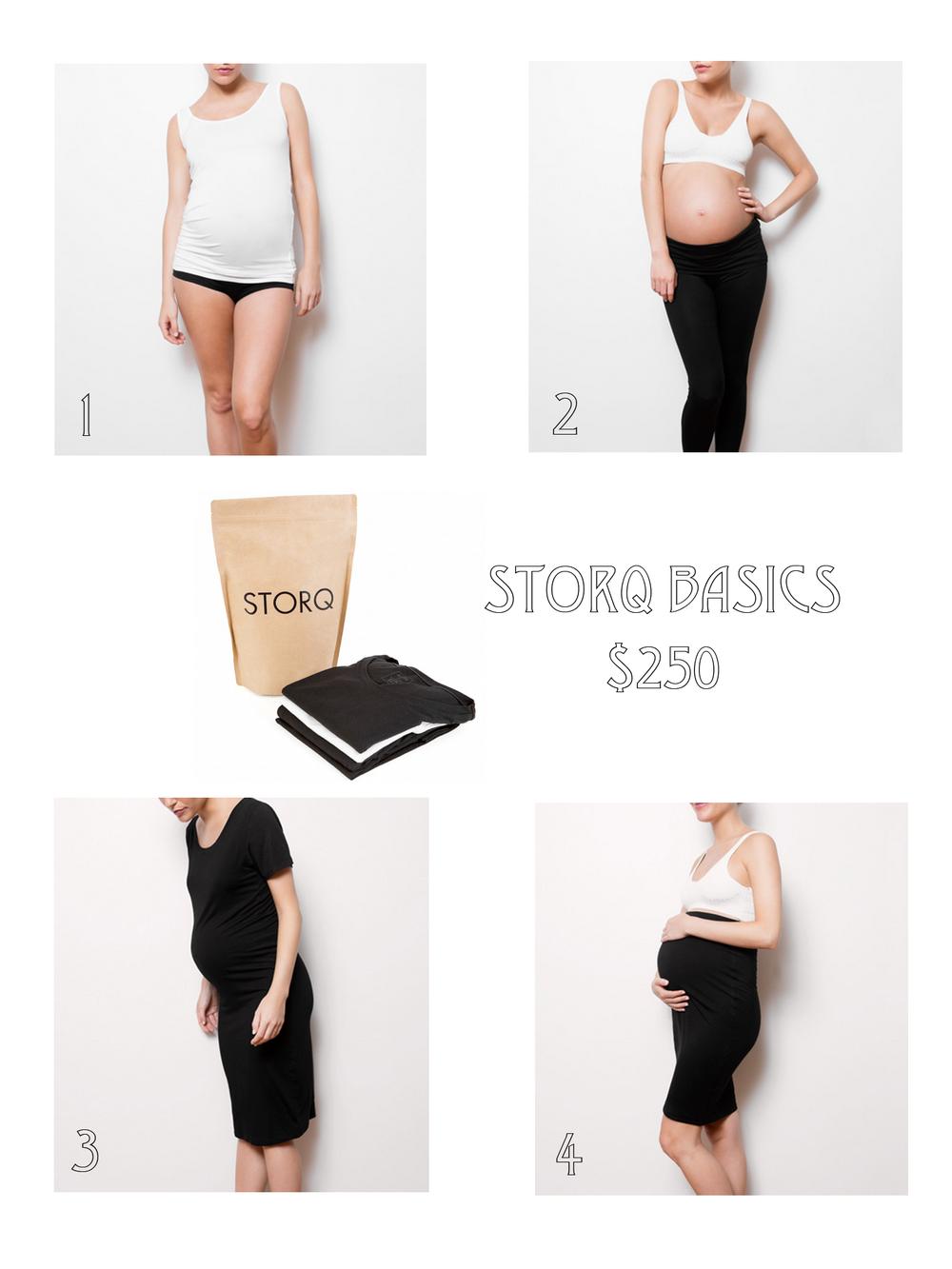 storq-basics.png