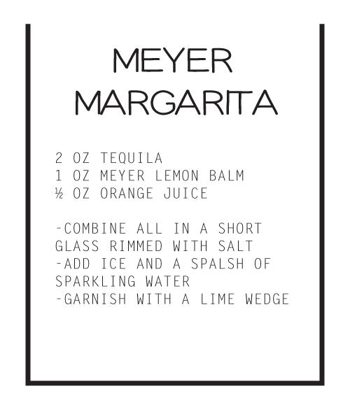MEYER-MARGARITA.jpg