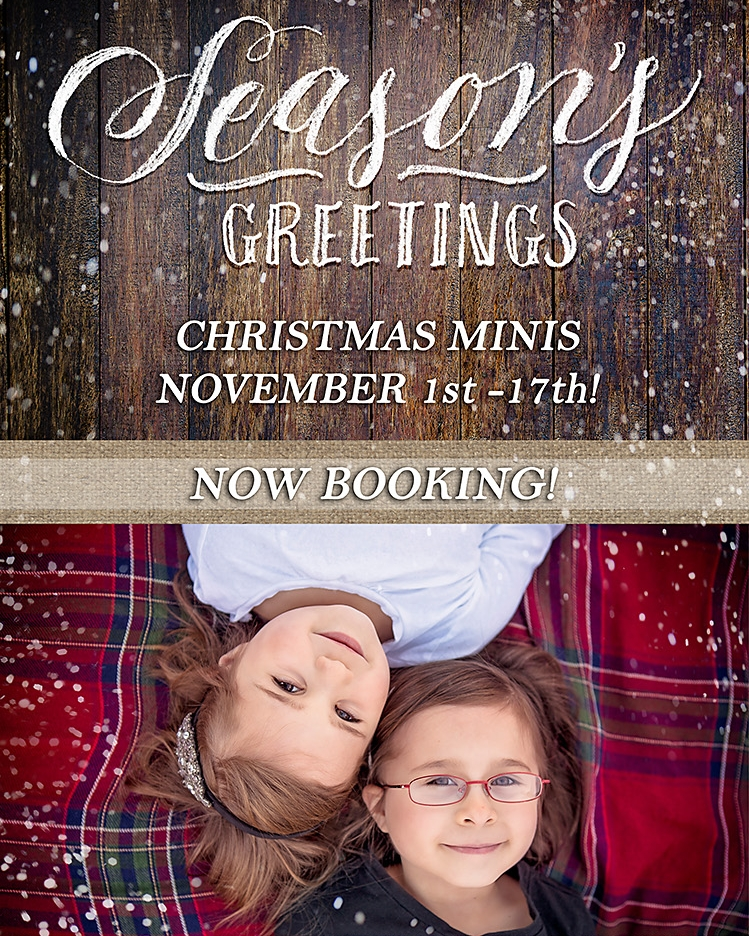 Christmas 2017 - Now Booking! - (Stuff the holiday cards with a little something extra this year!)