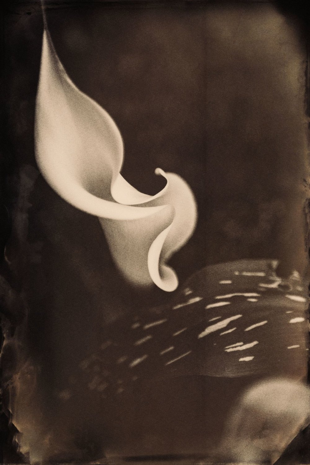 digitalwetplate_027.jpg