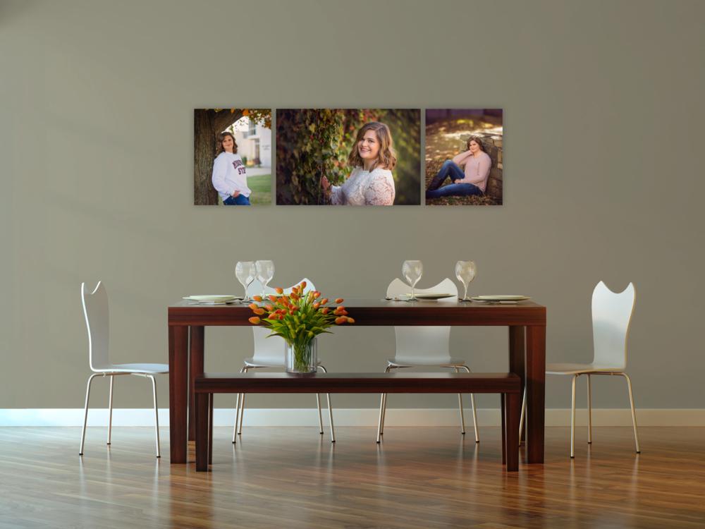 senior-portrait-wall-art-springfield-mo