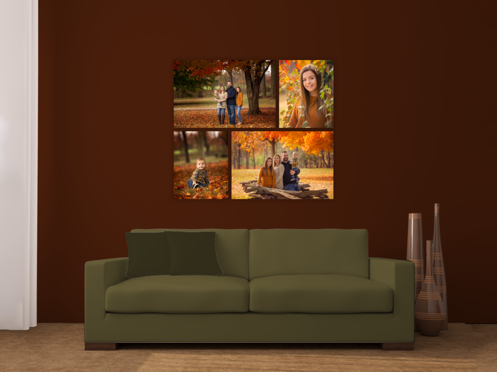 family-fine-art-missouri-fall.png