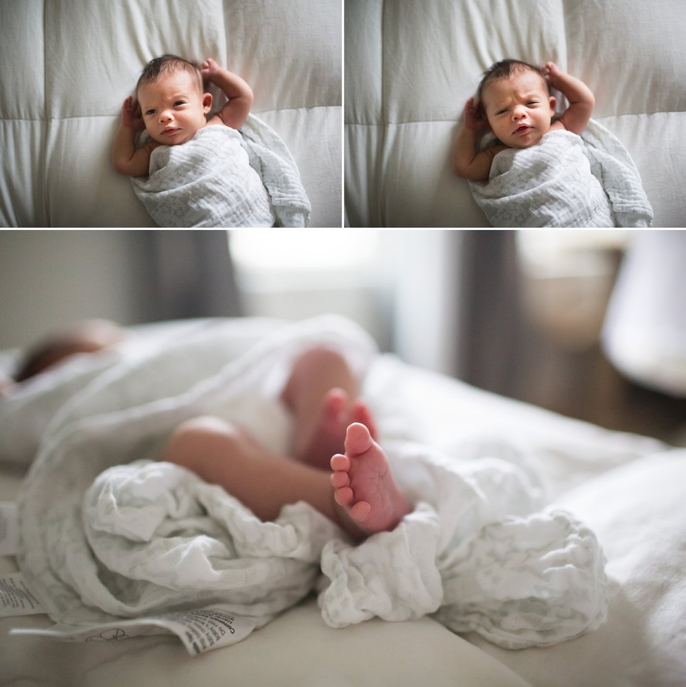 elena blair seattle newborn photographer