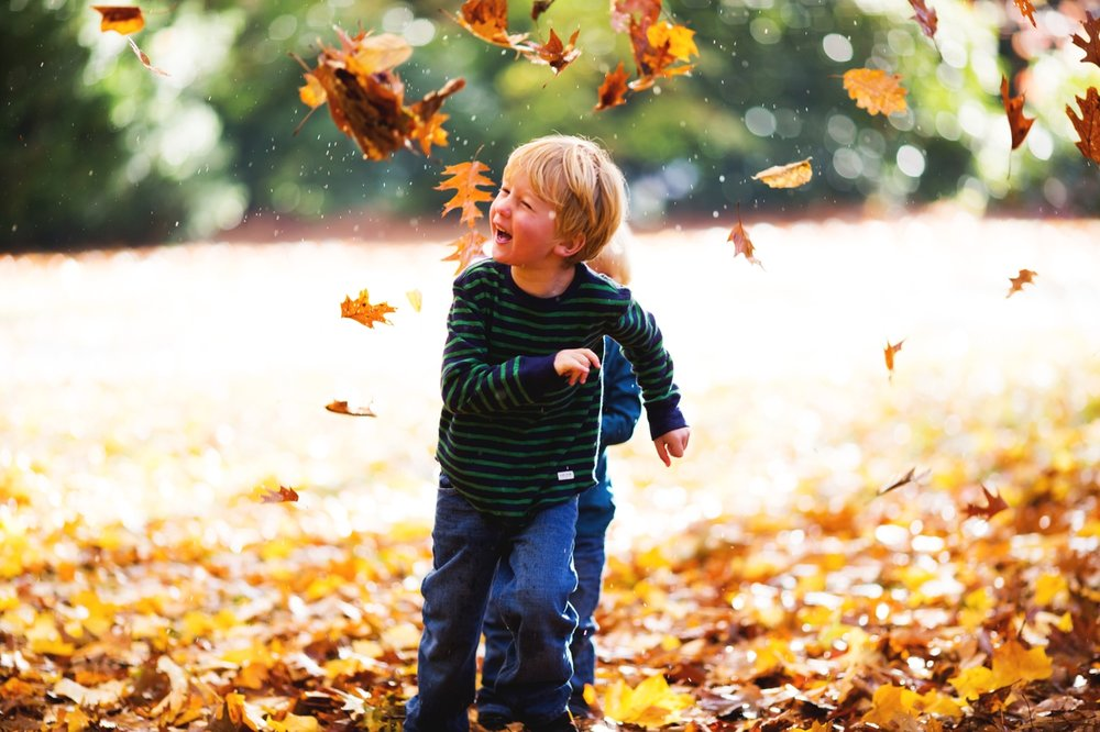 seattle family fall photographer elena s blair