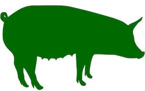 Pastured Pork -