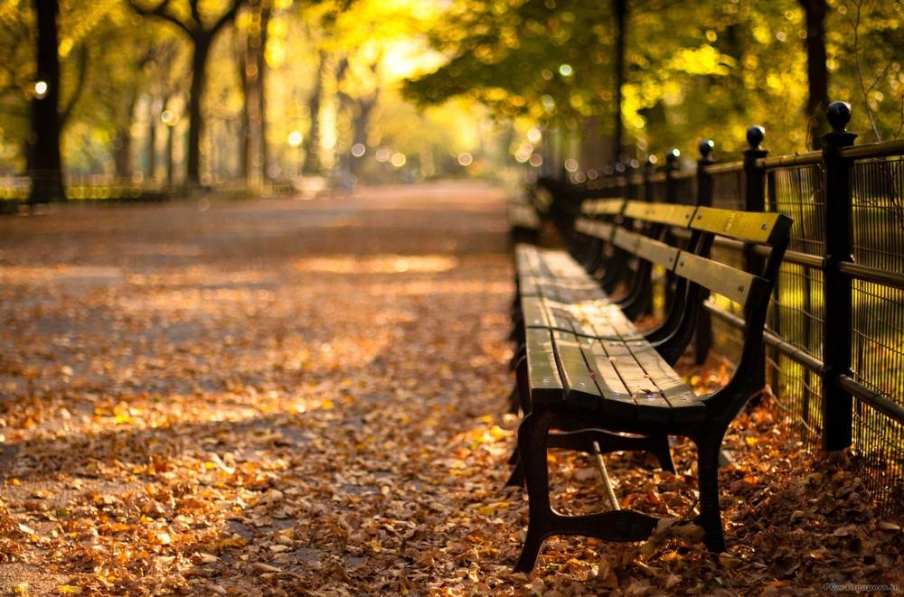 central-park-4.jpg