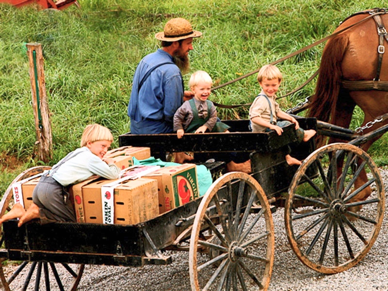 the-welcome-blog-the-amish-experience