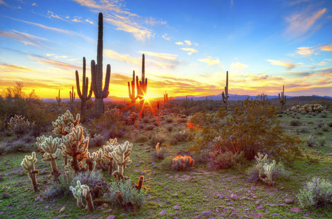 The Sonoran Desert of south-west Arizona and the south-eastern tip of California