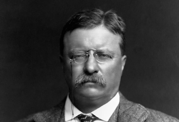 Theodore Roosevelt Jr. (October 27, 1858 – January 6, 1919) was an American statesman, author, explorer, soldier, naturalist, and reformer who served as the 26th President of the United States from 1901 to 1909. As a leader of the Republican Party during this time, he became a driving force for the Progressive Era in the United States in the early 20th century.