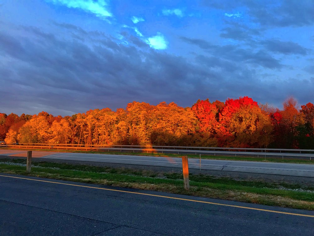 Modena Service Area, US-87. Foliage at Sunset - October 25th 2017.