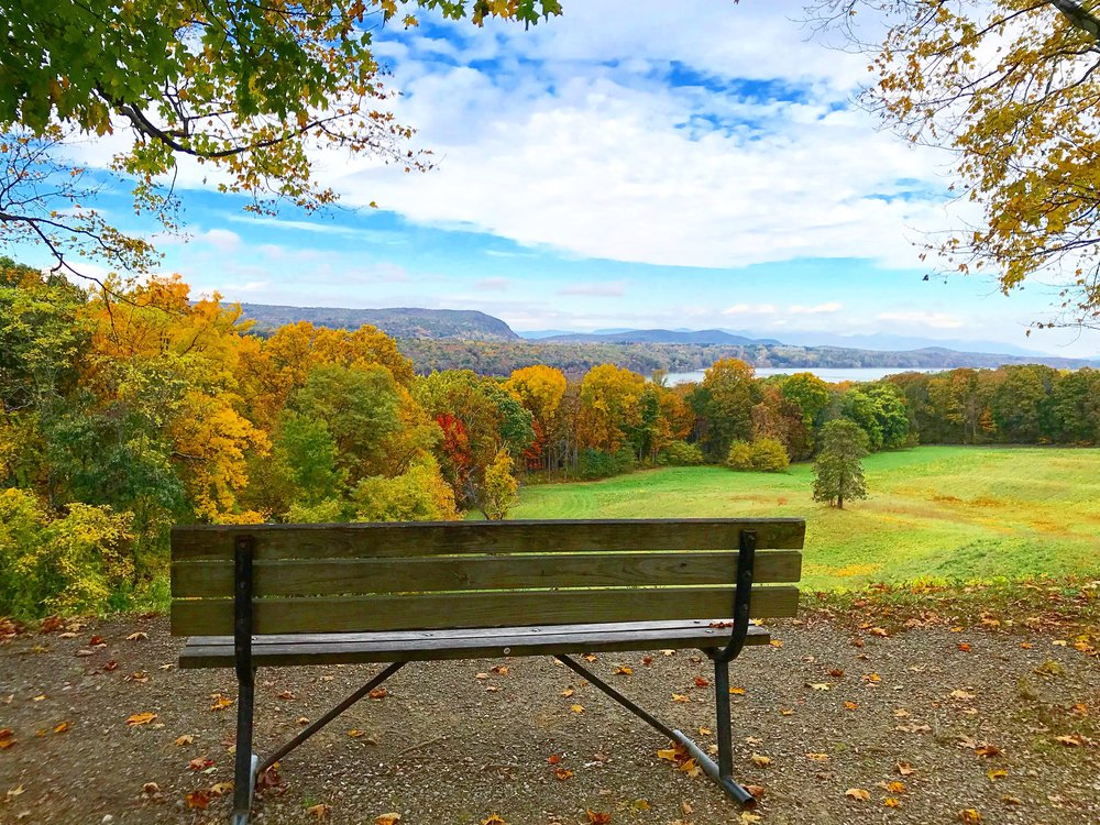 Bench View from Hyde Park, NY (Hudosn Valley) - October 25th, 2017.