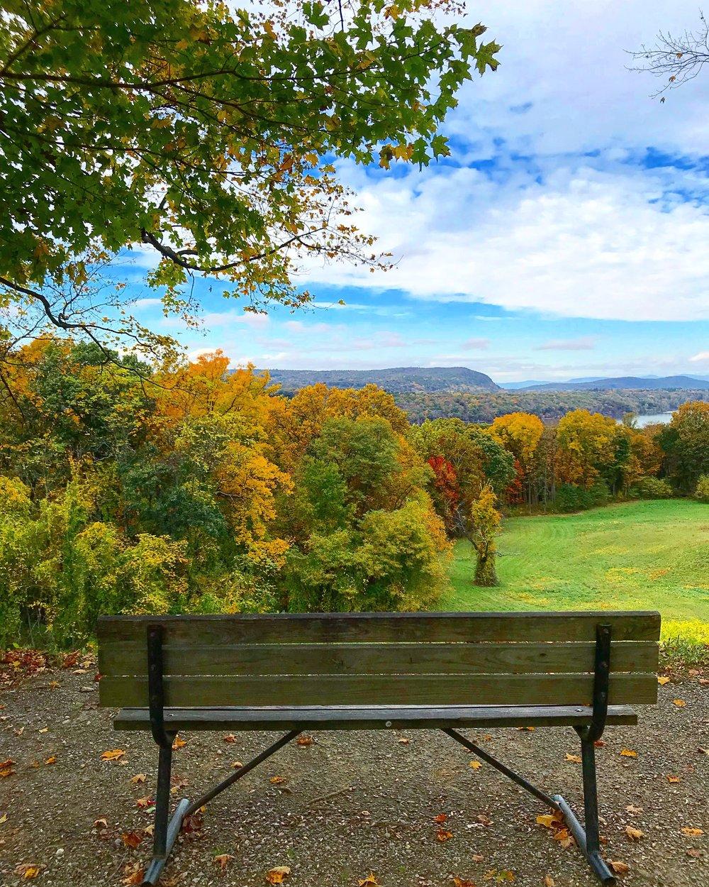 Vanderbilt Mansion Park, Bench with a view, Hyde Park, NY - October 25th 2017.