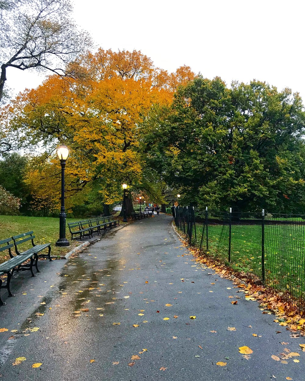 Central Park after Rain, 97th Street Transverse & 5th Ave - October 24th, 2017