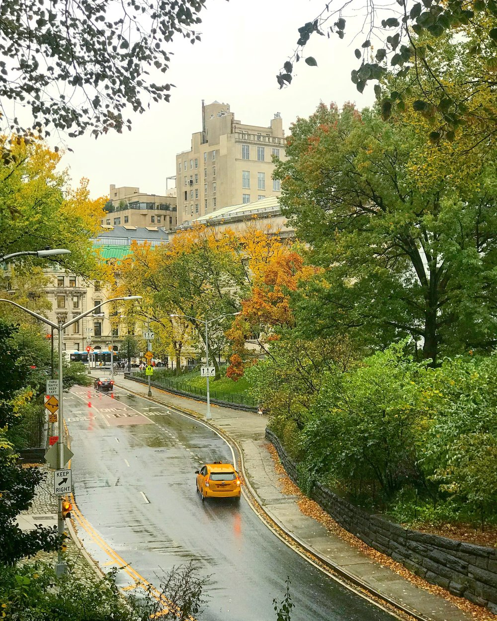Central Park, 85th Street Transverse, The MET Museum - October, 24th 2017.