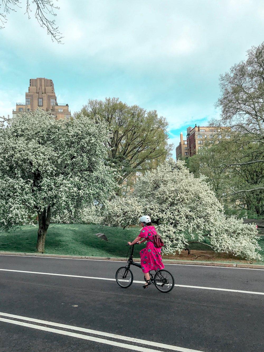 Central Park - West 92nd Street