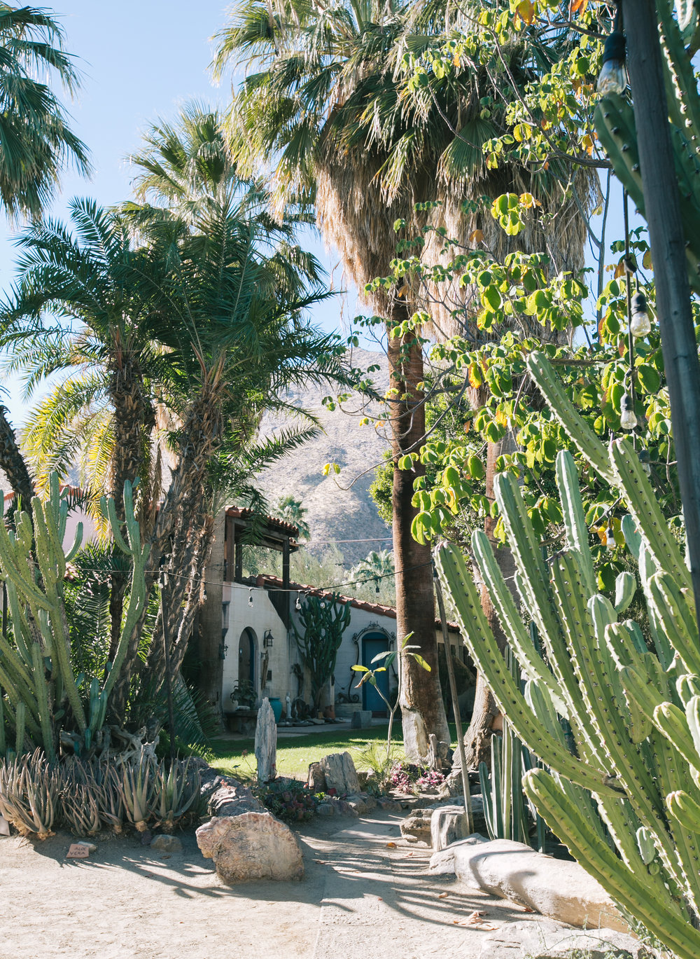 With The Exception Of The Central Cactarium, The Rest Of Moorten Botanical  Garden Was Outdoor, Taking Full Advantage Of The Palm Springs Sun.