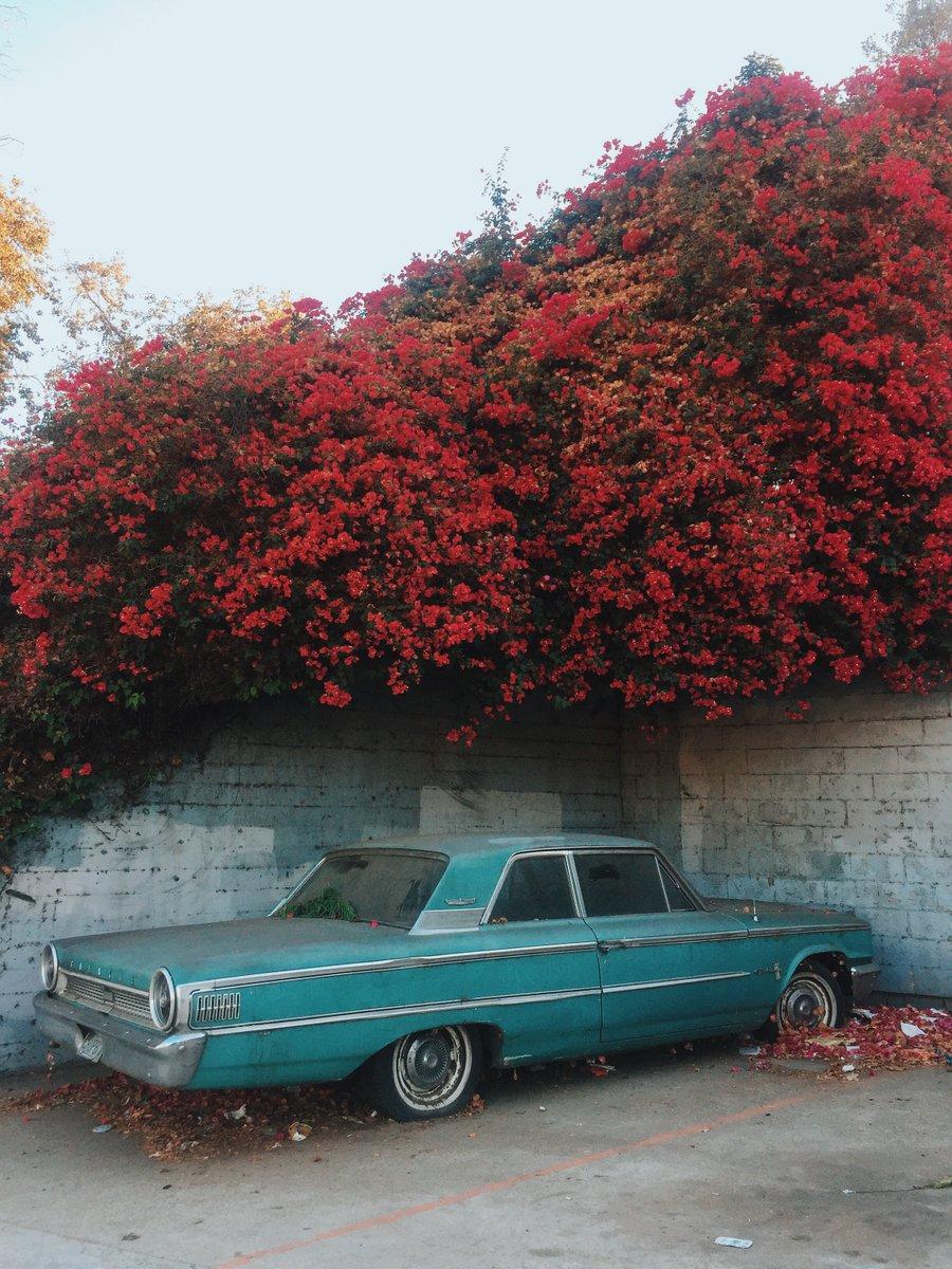 Los Angeles, 2016 by Sam Keller