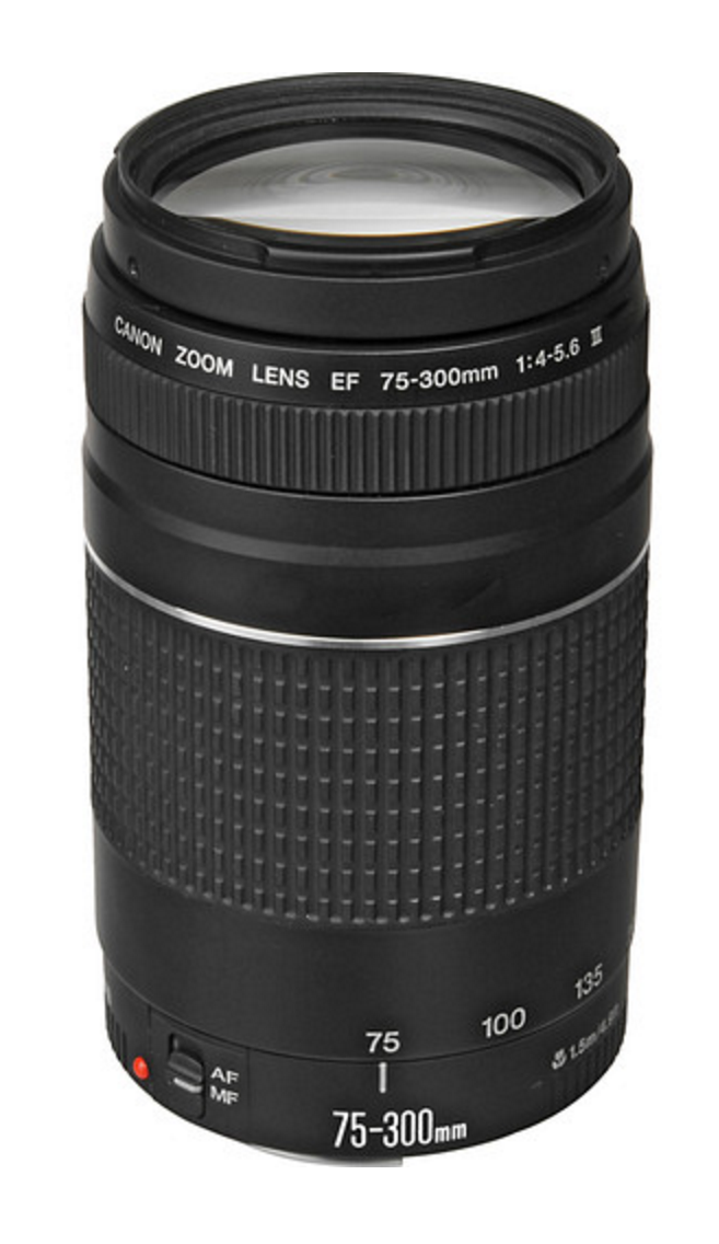 Canon 75-300mm f/4-5.6 $199 (basic telephoto kit lens)